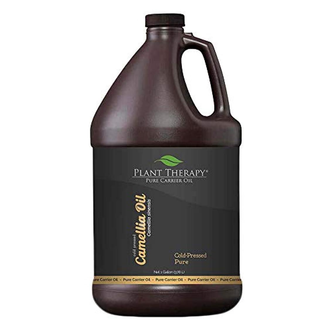 適応するポゴスティックジャンプ銅ツバキ種子キャリアオイル。 1ガロン。アロマセラピー、エッセンシャルオイルやマッサージ用基油。