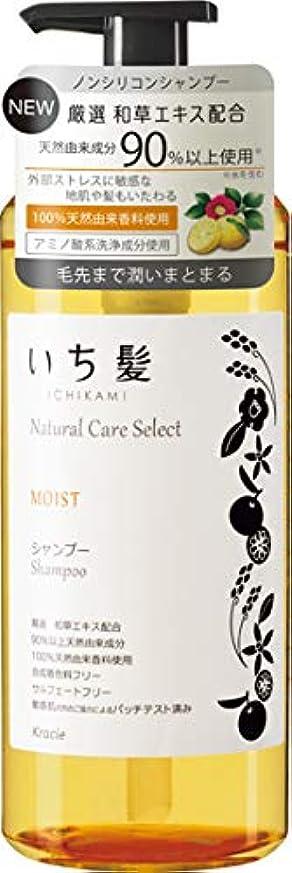 階層スクリーチ続編いち髪ナチュラルケアセレクト モイスト(毛先まで潤いまとまる)シャンプーポンプ480mL シトラスフローラルの香り