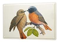 なまけ者雑貨屋 young love birds branch kiss leaves three ブリキ看板 カクテル 壁飾り レトロなデザインボード ポストカード サインプレート 【20×30cm】