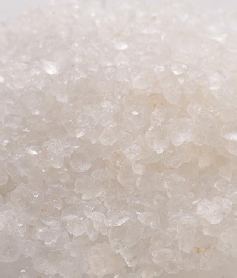 冬少し蒸気デッドシーソルト/1kg