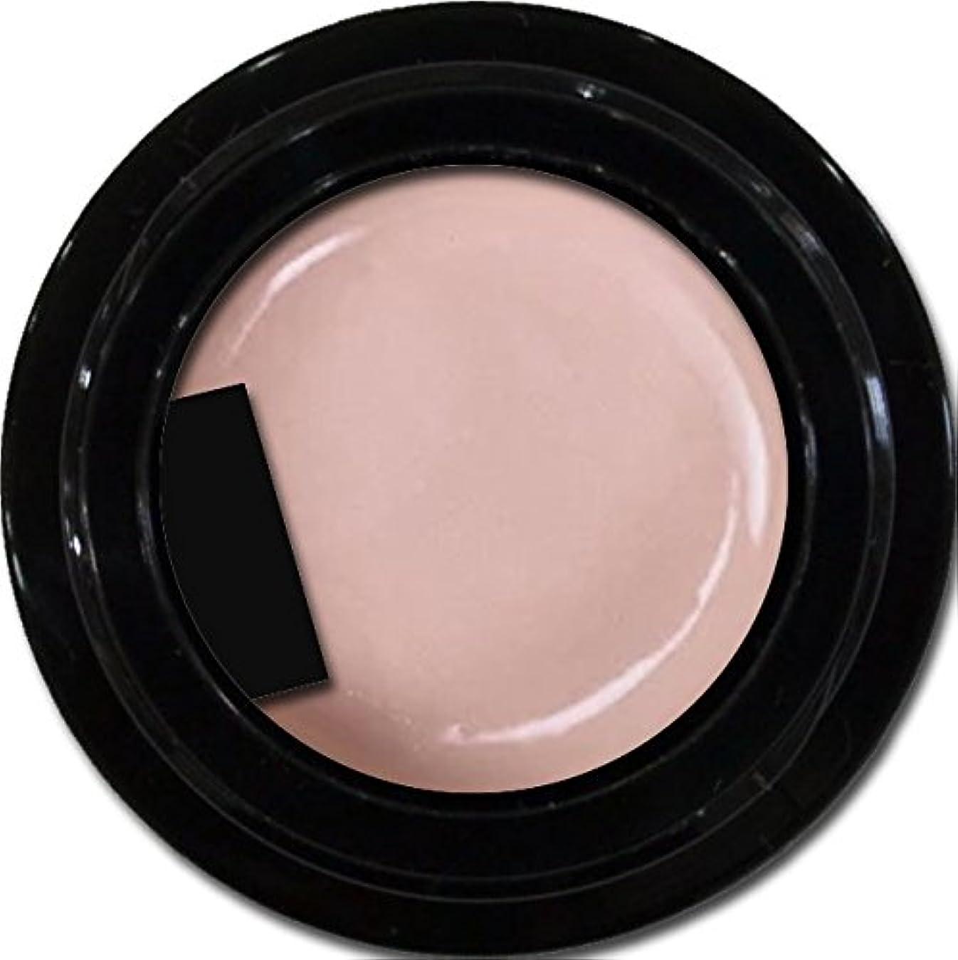 カラージェル enchant color gel P302 AdultBeige 3g/ パールカラージェル P302アダルトベージュ 3グラム