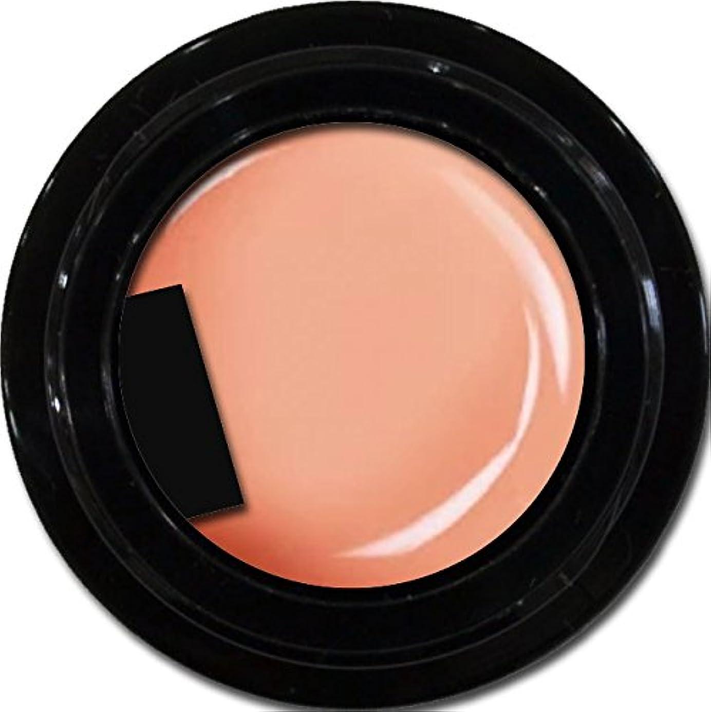 企業あからさま収束するカラージェル enchant color gel M302 NavelOrange 3g/ マットカラージェル M302 ネーブルオレンジ 3グラム