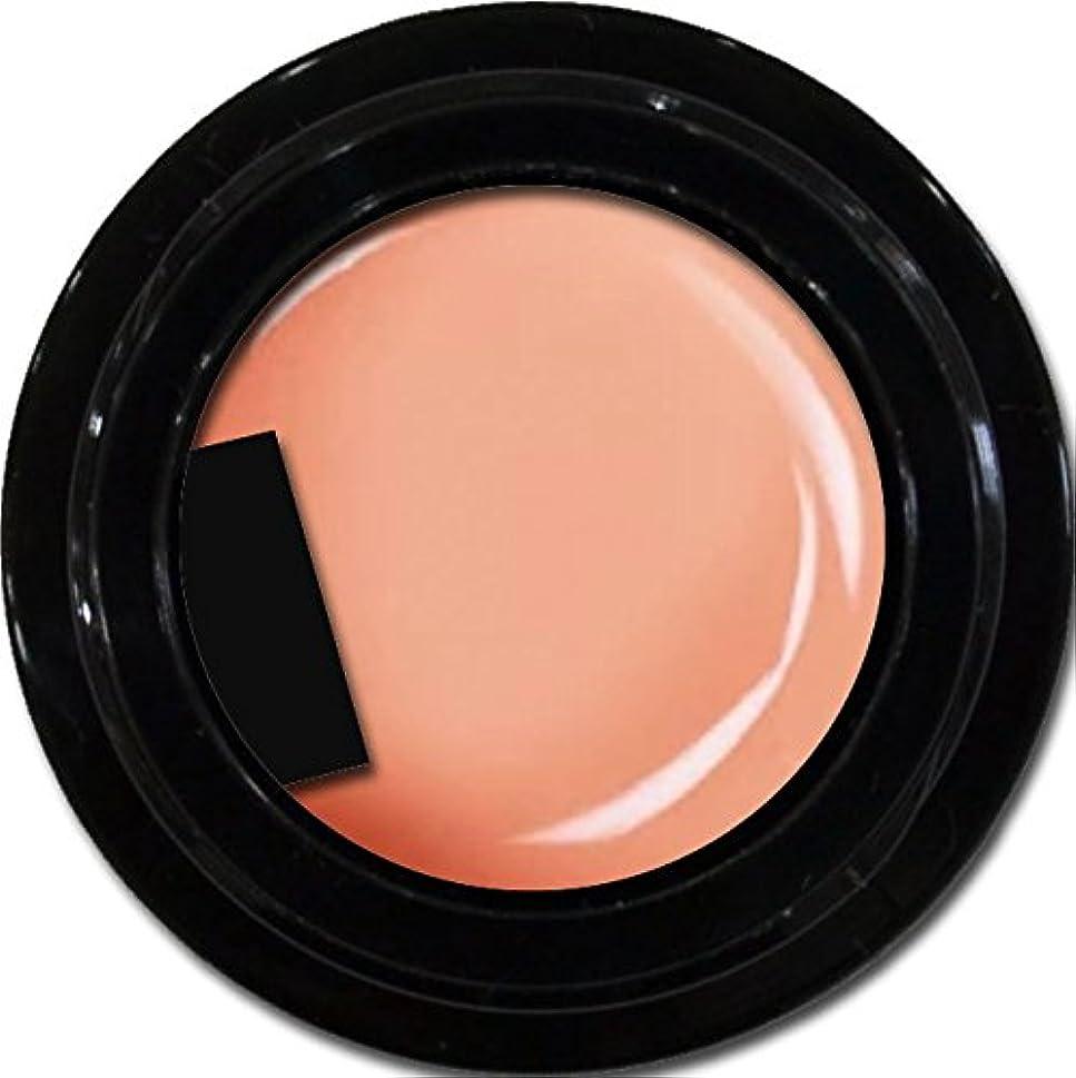 レバー放棄する笑いカラージェル enchant color gel M302 NavelOrange 3g/ マットカラージェル M302 ネーブルオレンジ 3グラム