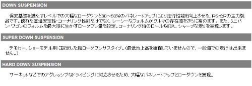 品番:D034S アールエスアール(RSR) RS☆Rスーパーダウンサスペンション 1台分 DAIHATSU ムーヴ L150S FF 660 TB 14...