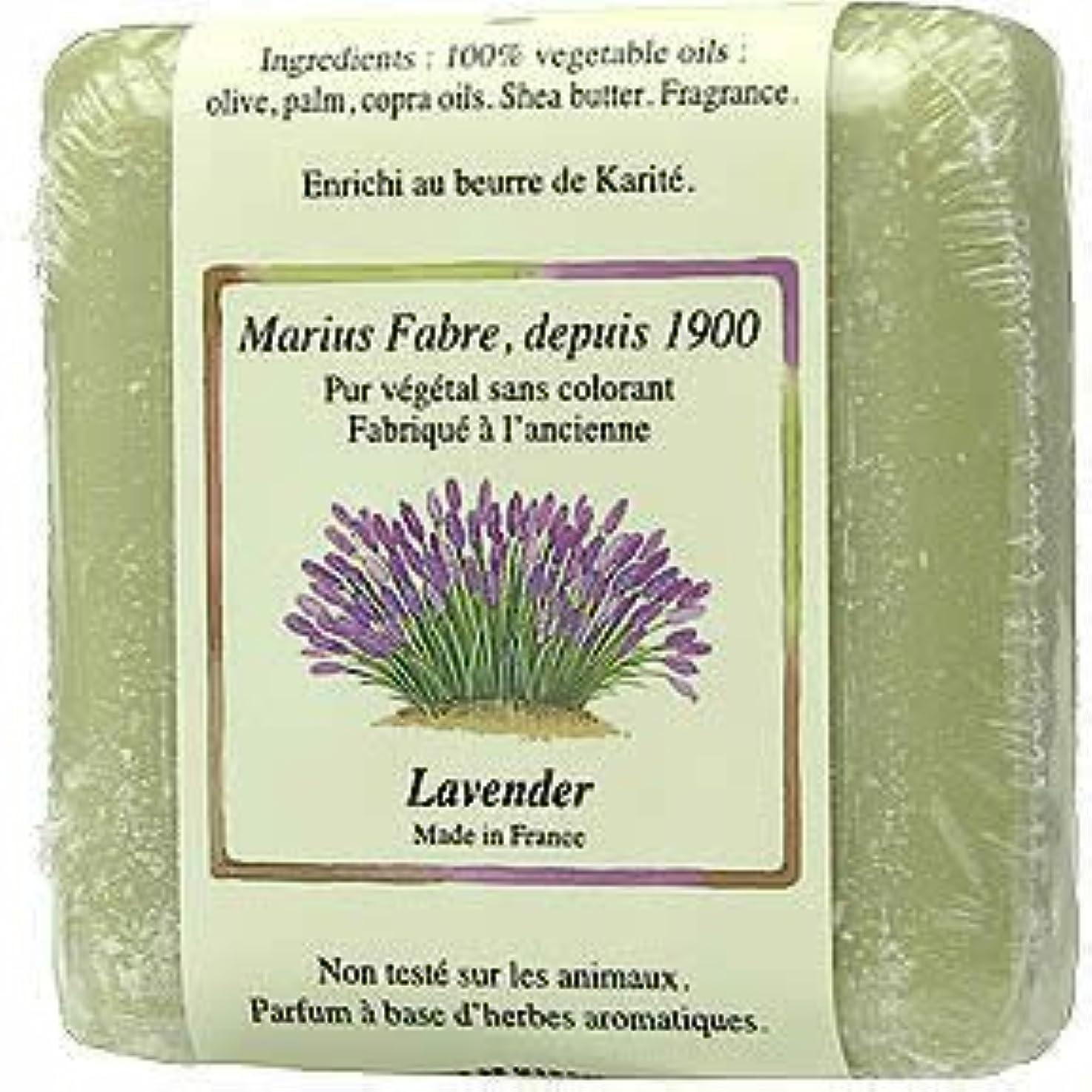 ハイランド食物うるさいサボン ド マルセイユ ラベンダー 100g
