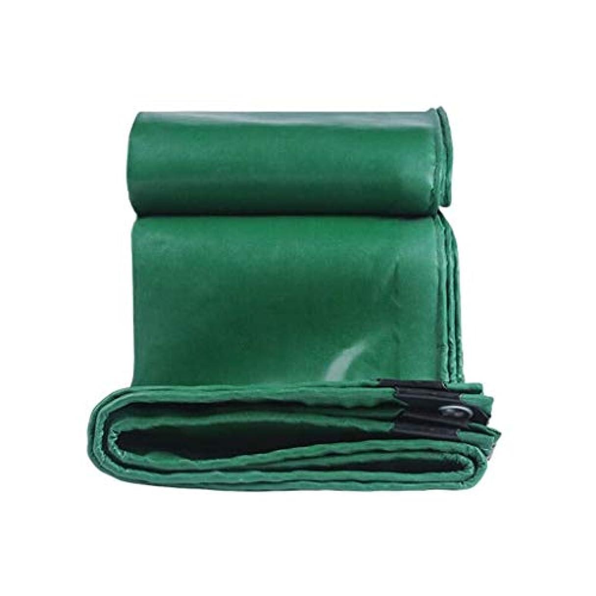 醜いイタリック方程式ZX タープ 多目的ターポリン防水屋外のキャンプ防水シート自動車のカバーテントボートに最適 テント アウトドア (Color : Green, Size : 5x6m)