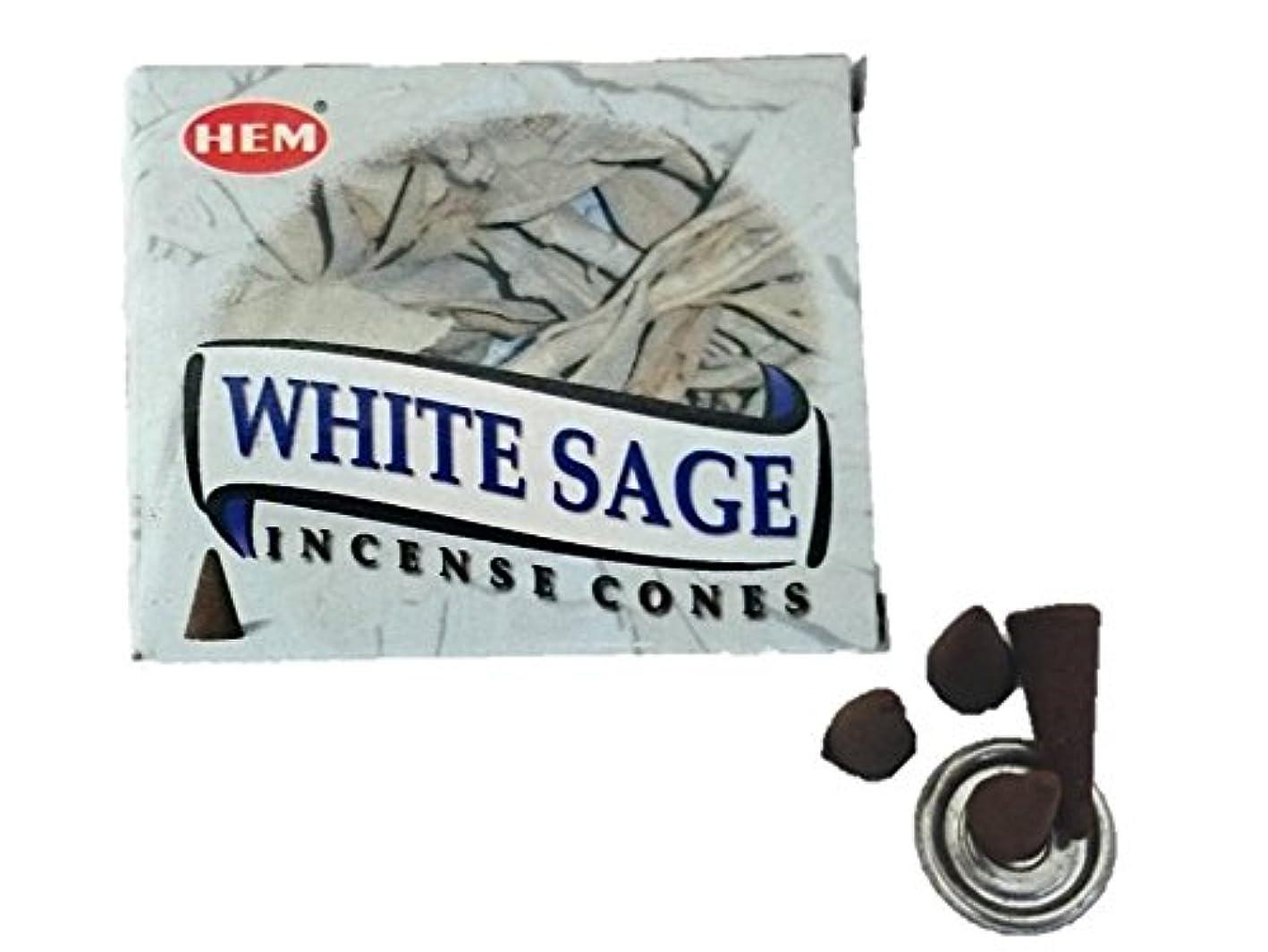 磁石確かめるアプトHEM(ヘム)お香 ホワイトセージ コーン 1箱