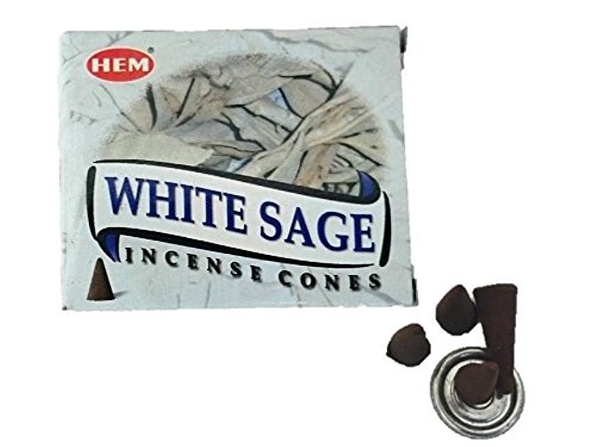 勇敢な論争下品HEM(ヘム)お香 ホワイトセージ コーン 1箱