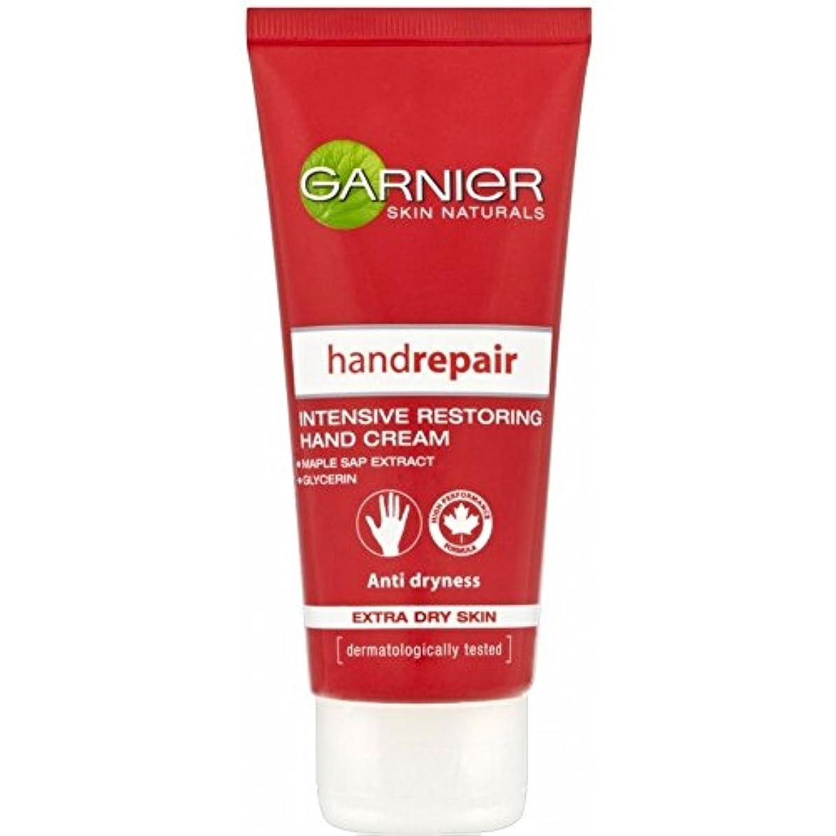 掃除偽善者カポックGarnier Hand Repair for Extra Dry Skin (100ml) 余分な乾燥肌のためのガルニエハンド修理( 100ミリリットル) [並行輸入品]