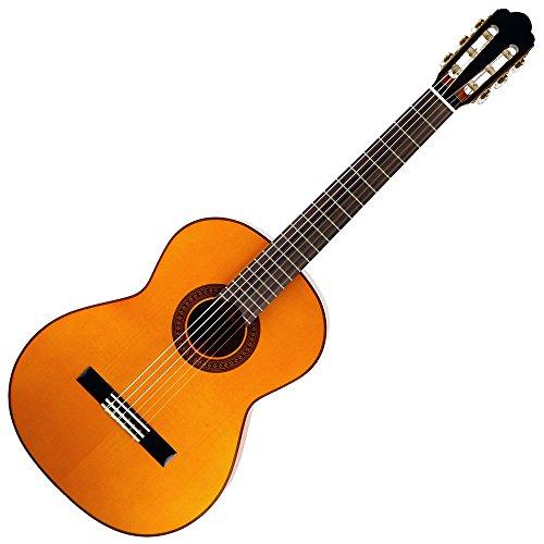 ARIA アリア フラメンコギター ソフトケース付 A-100F