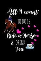 Ride A Horse & Drink Tea: Funny Gag Gifts For Her, Birthday, Christmas & Valentine's Day Gifts For Girlfriend, Unique Equestrian Gifts, Small Diary