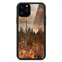 iPhone 11 Pro Max 用 強化ガラスケース クリア 薄型 耐衝撃 黒 カバーケース サグアロ 西部アリゾナに迫る嵐雲の絶景シェイディー砂漠 オレンジグリーン iPhone 11 Pro 2019用 iPhone11 Proケース用