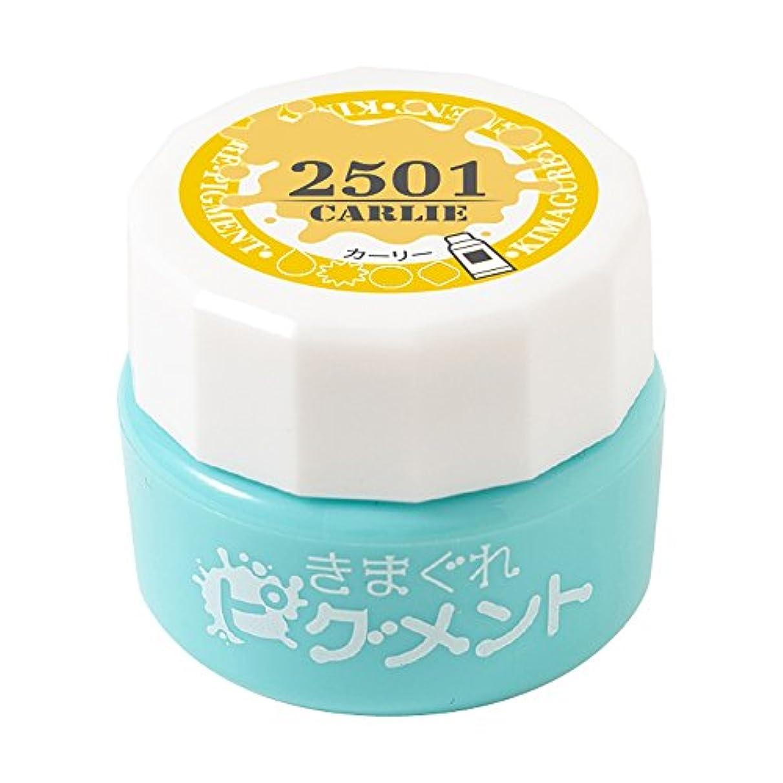 イソギンチャク補体はさみBettygel きまぐれピグメント カーリー QYJ-2501 4g UV/LED対応