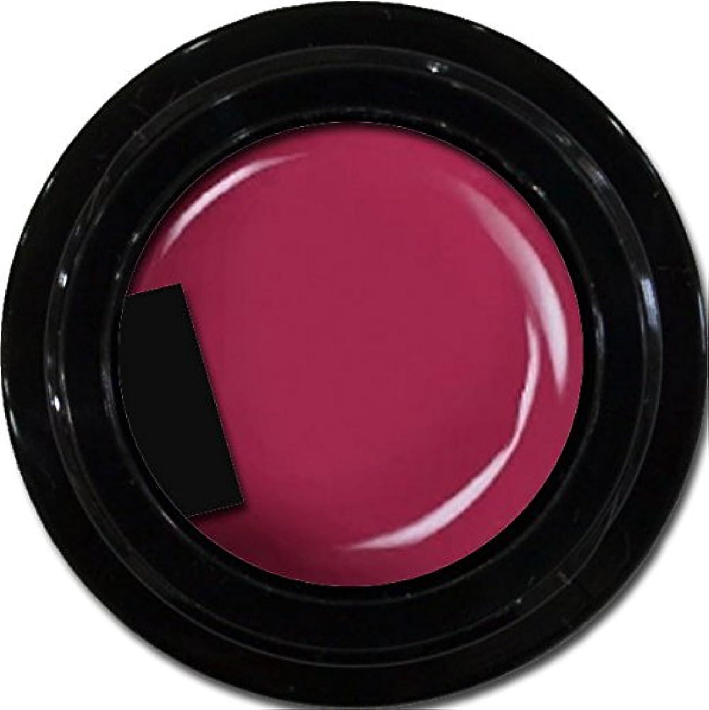 特権防衛ゆりカラージェル enchant color gel M510 PinkPurple 3g/ マットカラージェル M510 ピンクパープル 3グラム