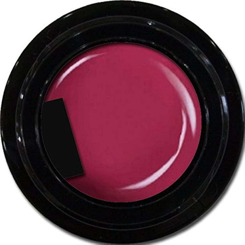 インデックスマザーランド認識カラージェル enchant color gel M510 PinkPurple 3g/ マットカラージェル M510 ピンクパープル 3グラム