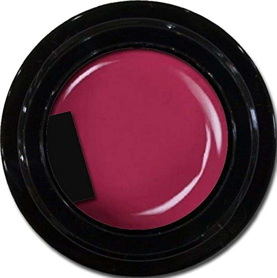 ゴシップ許す嘆願カラージェル enchant color gel M510 PinkPurple 3g/ マットカラージェル M510 ピンクパープル 3グラム