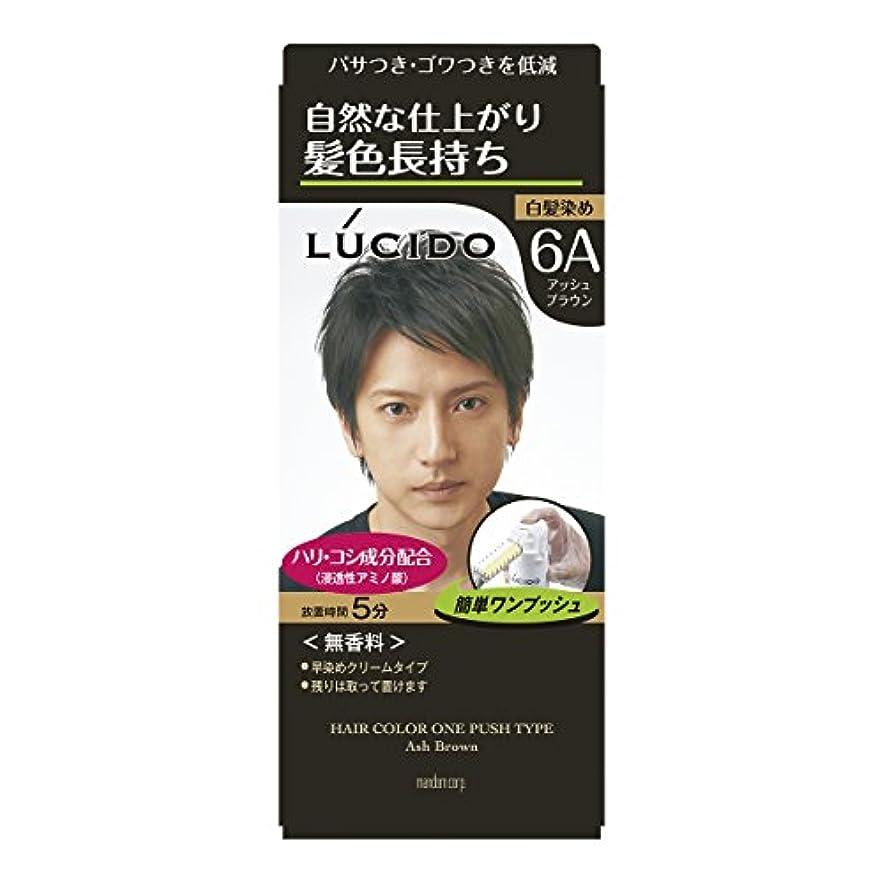鋸歯状支店知覚ルシード ワンプッシュケアカラー アッシュブラウン 1剤50g?2剤50g (医薬部外品)