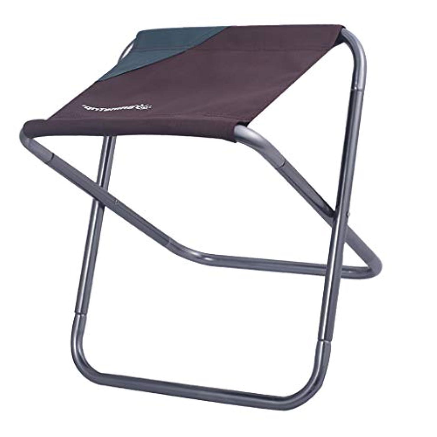 岩軽蔑する熟読Perfeclan 折りたたみチェア 携帯用椅子 合金 屋外 釣り ピクニック 収納袋付