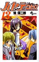 ハヤテのごとく! 13 (少年サンデーコミックス)