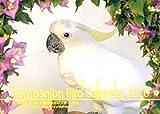 【Amazon.co.jp 限定】コンパニオンバード・鳥写真・カレンダー2020 (A5サイズ。ワンタッチで卓上にも壁掛けにもなる3Wayカレンダー)