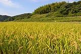 名手農園 淡路産 淡路米 玄米 ひのひかり 2017年産 30kg 期間限定サービス価格で販売中!