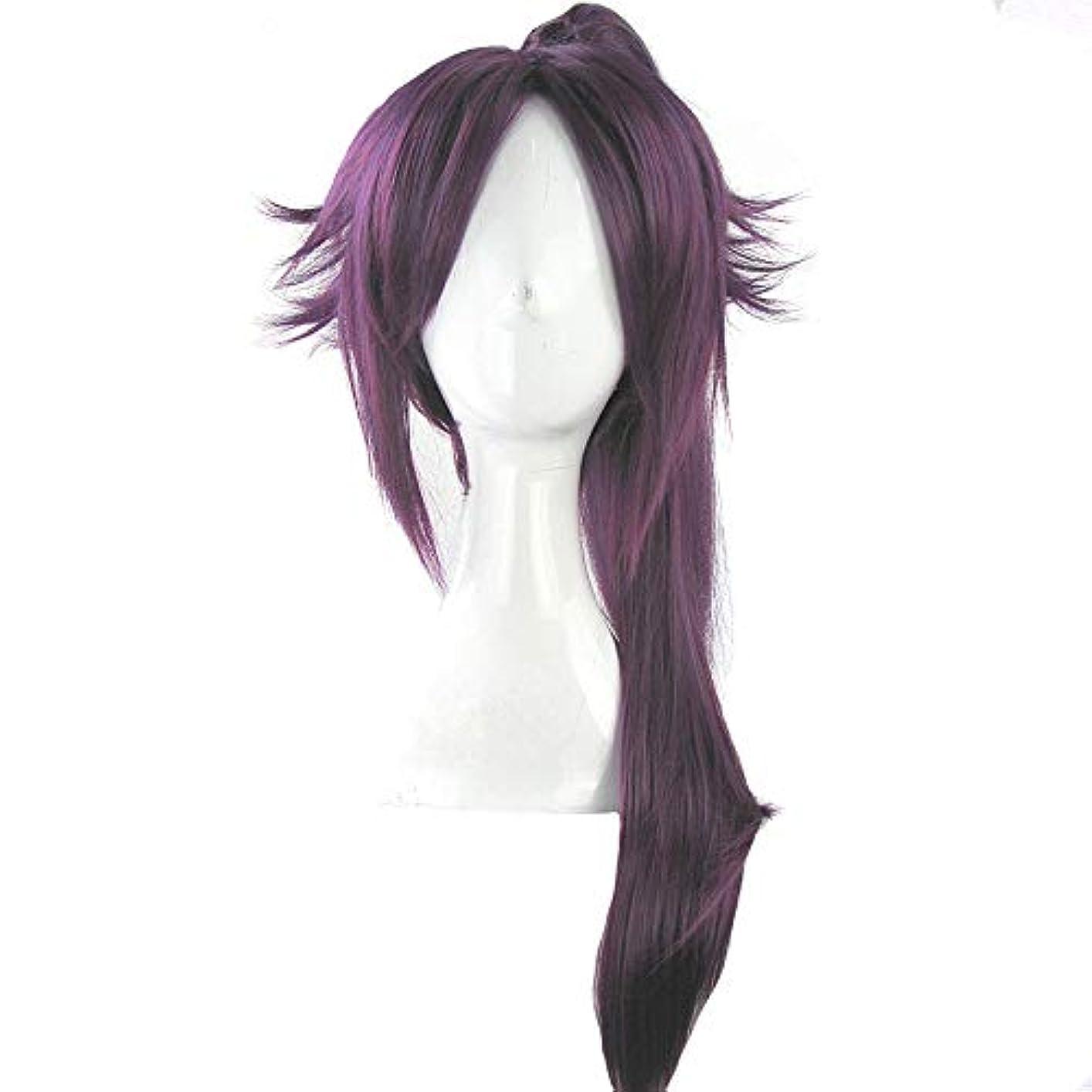 特徴づける鮮やかな骨折かつら - ファッション長いストレート高温シルクウィッグ自然な柔らかなパーソナリティポニーテールフリー形状ハロウィーンボールの役割を果たす70cmの紫色に適して (色 : Purple, サイズ さいず : 70cm)