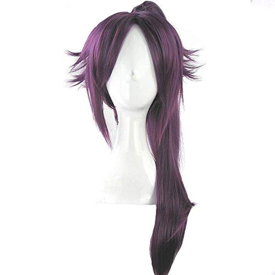 夜間殺人者シェードかつら - ファッション長いストレート高温シルクウィッグ自然な柔らかなパーソナリティポニーテールフリー形状ハロウィーンボールの役割を果たす70cmの紫色に適して (色 : Purple, サイズ さいず : 70cm)