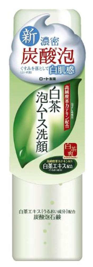 プラスチック勤勉どれかロート製薬 白茶爽 白茶泡ムース濃密炭酸泡洗顔 高純度茶カテキン配合 150g