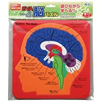 (まとめ)アーテック EVA脳パズル 【×30セット】 ds-1563820
