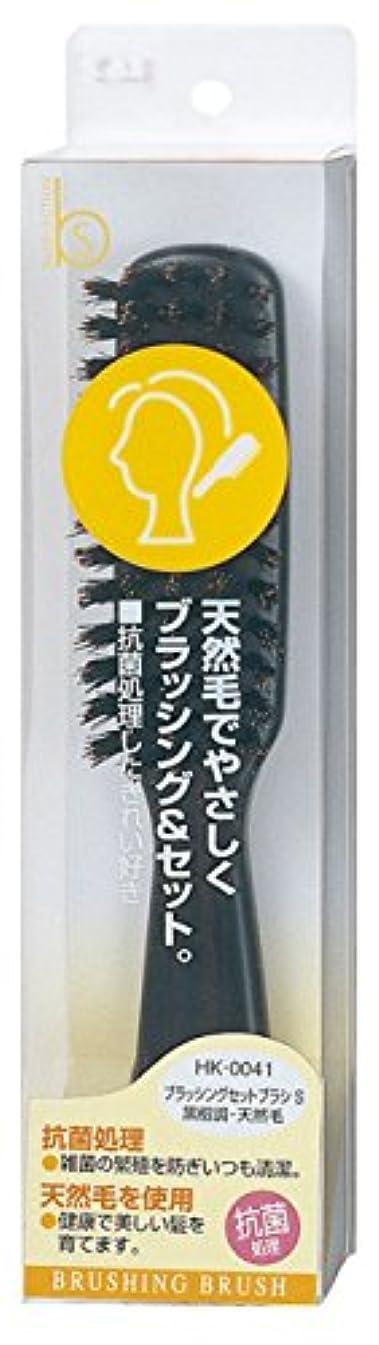 貝印 Beセレクション ブラッシングセットブラシ S 黒檀 HK0041
