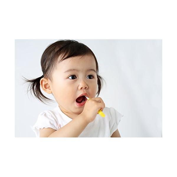 ピジョン Pigeon 乳歯ブラシセット 前歯...の紹介画像7