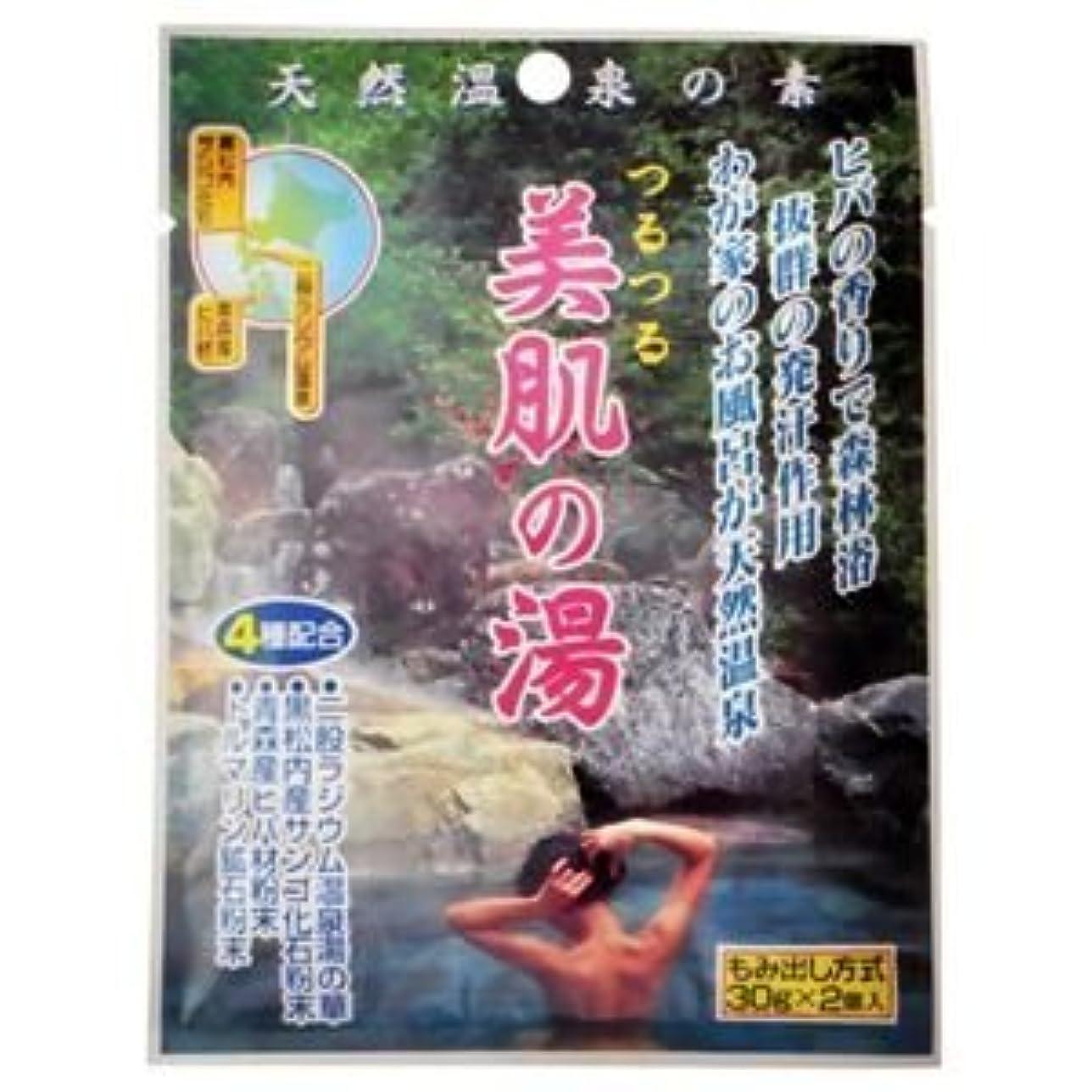 投げる六インフルエンザ天然温泉の素 つるつる美肌の湯 30g×2個入(入浴剤) (10個セット)