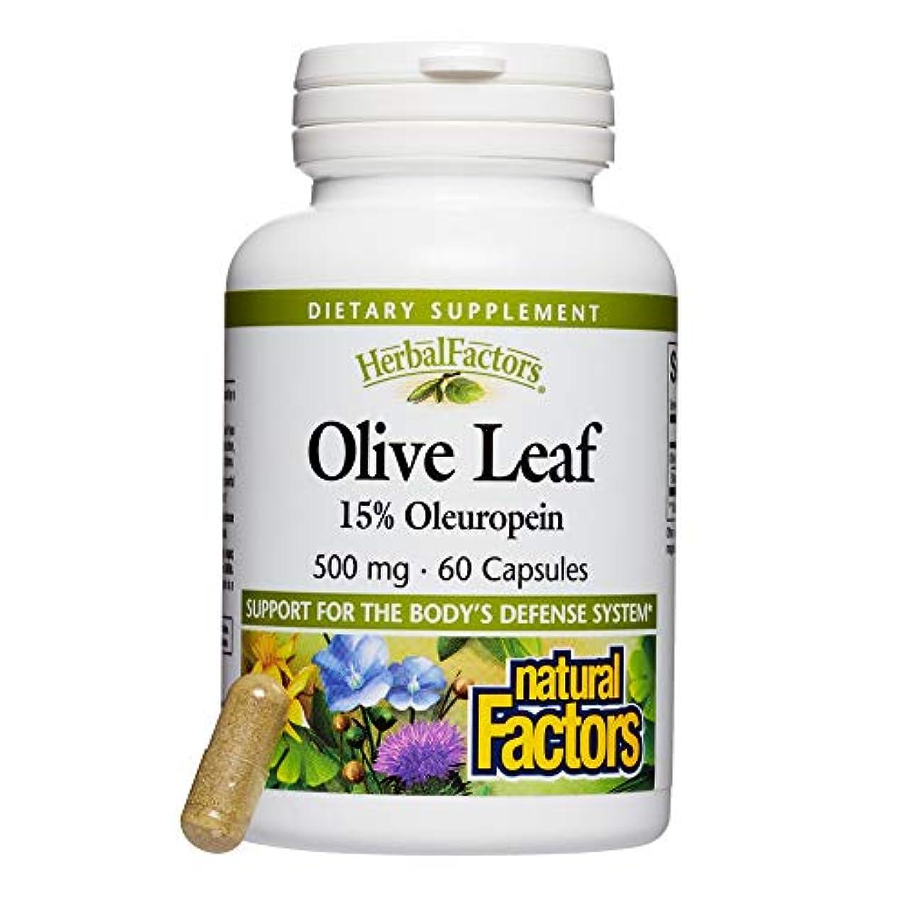 セントビーチ雑種海外直送品 Natural Factors Olive Leaf Extract, 60 Caps 500 mg