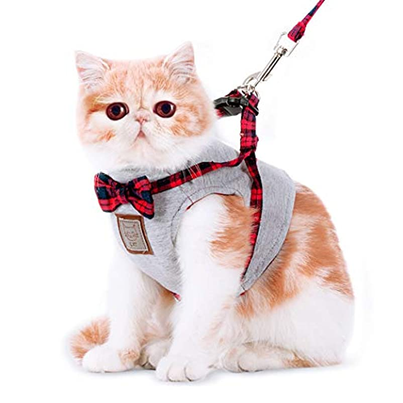 自分を引き上げるクライマックス軍隊sunworld 猫服 ペット服 ハーネス リードセット リボン チェック柄 可愛い ベスト 春 夏 3サイズ 上品 優雅 シンプル 猫用品 おしゃれ 猫のハーネス 猫のリード バックル 簡単脱着式 抜けない 調節可能 ペット用品 室内 散歩 お出かけ アウトドア
