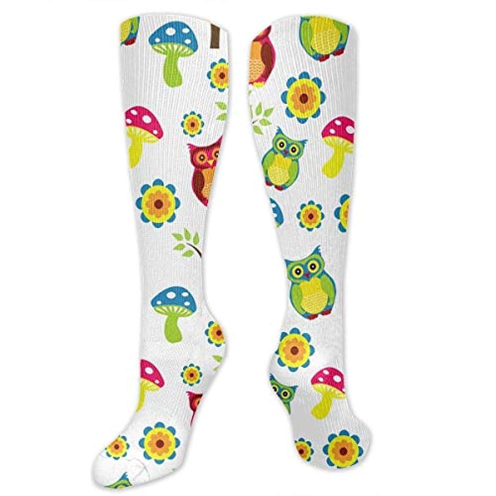 スーツレッスンまっすぐにする靴下,ストッキング,野生のジョーカー,実際,秋の本質,冬必須,サマーウェア&RBXAA Cute Owl Socks Women's Winter Cotton Long Tube Socks Knee High Graduated...