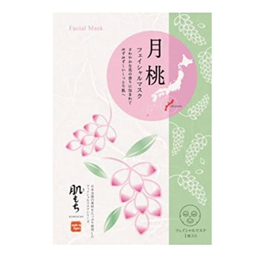 波シネウィ麺肌もち(きもち) フェイシャルマスク 月桃(1枚20ml) 5枚セット