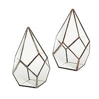 P Prettyia 2点セット 植物ホルダー 多肉植物鉢 ガラス 幾何学 テラリウム ディスプレイ モダン 卓上装飾
