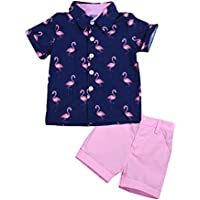 Toddler Kids Baby Boys Gentleman Outfit Flamingo Short Sleeve Button Down Tops Shirts+ Solid Shorts Pants Set 2Pcs Outfits