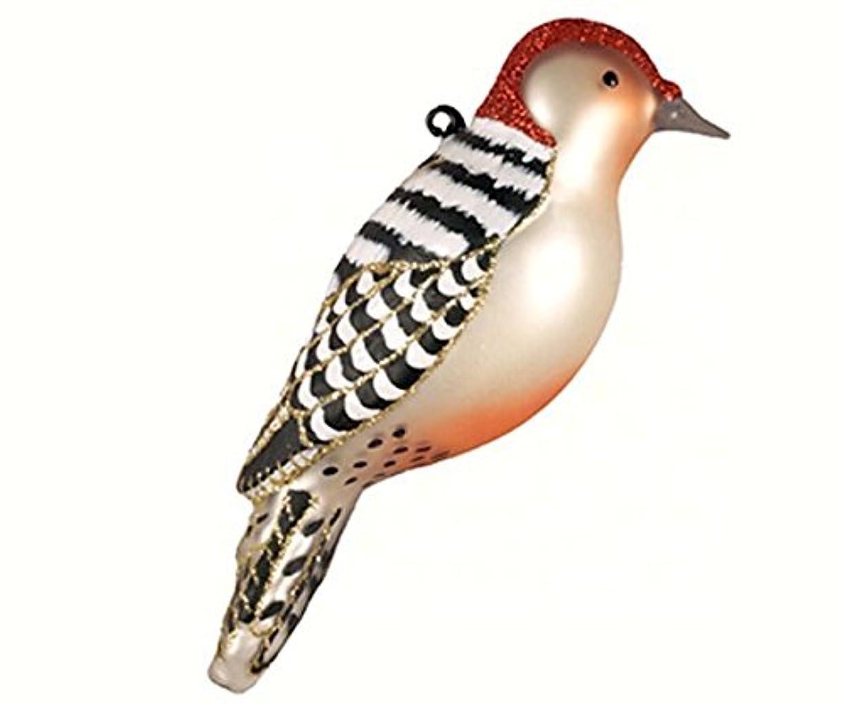 マートお父さんどのくらいの頻度でCobane Studio COBANEC391 Red Bellied Woodpecker Ornament