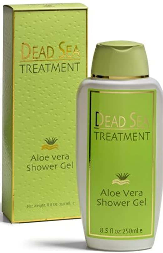 悪性磨かれた挨拶ALOE VERA DS TREATMENT SHOWER GEL 250 ml