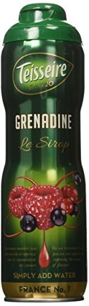 葉ストレスの多い証拠Grenadine Teisseire French Syrup Grenadine concentrate 60 cl [並行輸入品]