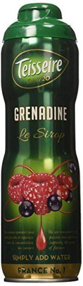緯度自分を引き上げる和解するGrenadine Teisseire French Syrup Grenadine concentrate 60 cl [並行輸入品]