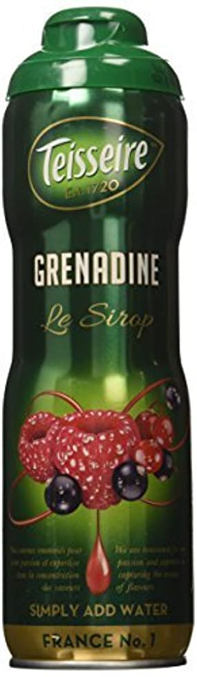ギャロップ訴える純粋にGrenadine Teisseire French Syrup Grenadine concentrate 60 cl [並行輸入品]