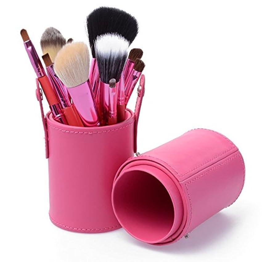 背の高い面染色KanCai メイク ブラシ セット 12本 化粧ブラシ セット コスメ ブラシ 収納ケース付き (ピンク)
