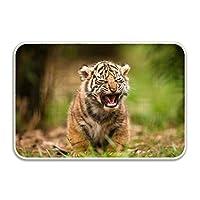 フラダンス衣装 トップス Tシャツ モンステラ 半袖 動物トラ赤ちゃん動物練習着 発表会 婦人服