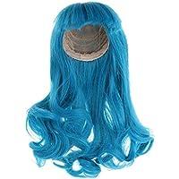 FLAMEER 全4タイプ 人形髪 ウィッグ かつら ドール 波髪 ヘア 頭皮 高温ワイヤー 1/3 BJD SD人形適応  - 青 26cm