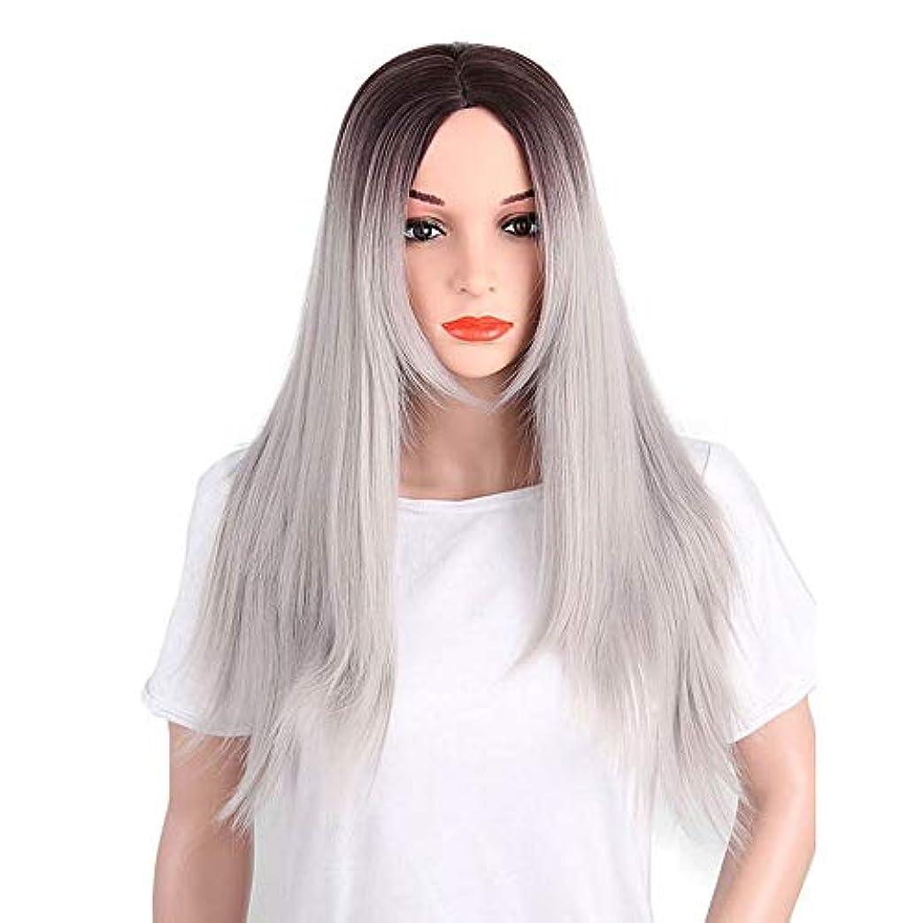 スーパーマーケット構想する囲いかつら ハイエンドの女性のヘアピース、マルチカラーの女性の長いかつら化学繊維高温シルク素材のかつら、日常の使用に適したDIYの髪のかつらさまざまな祭り (Color : Gray)