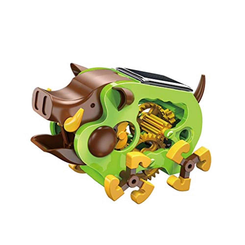 LIUFS-toys 知育玩具 太陽発電 野生の退屈知育玩具 (色:緑、サイズ:S)