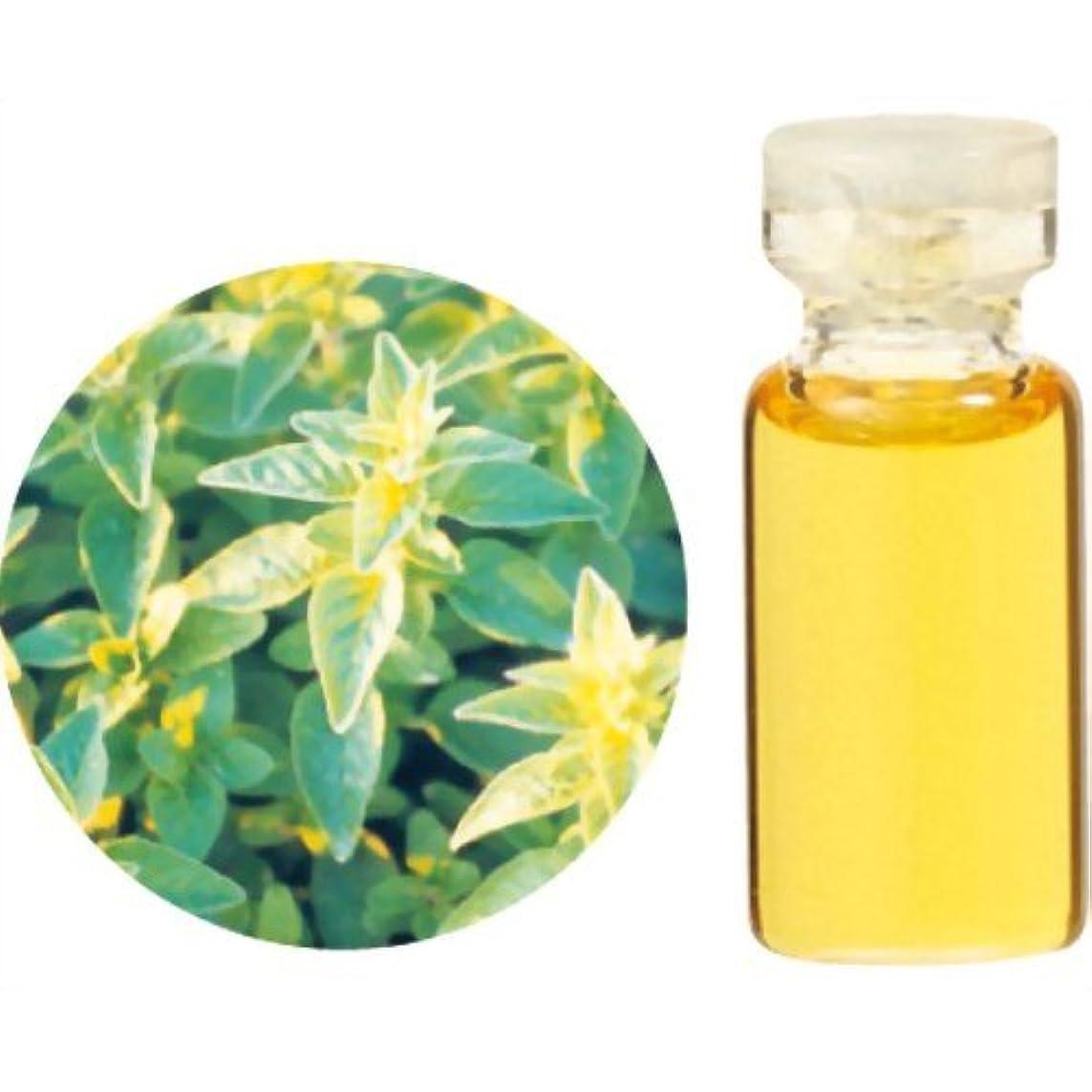 パッケージ不調和着替える生活の木 Herbal Life レアバリューオイル メリッサ 1ml