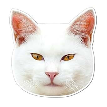 kmag 猫の顔マグネット 白ねこ